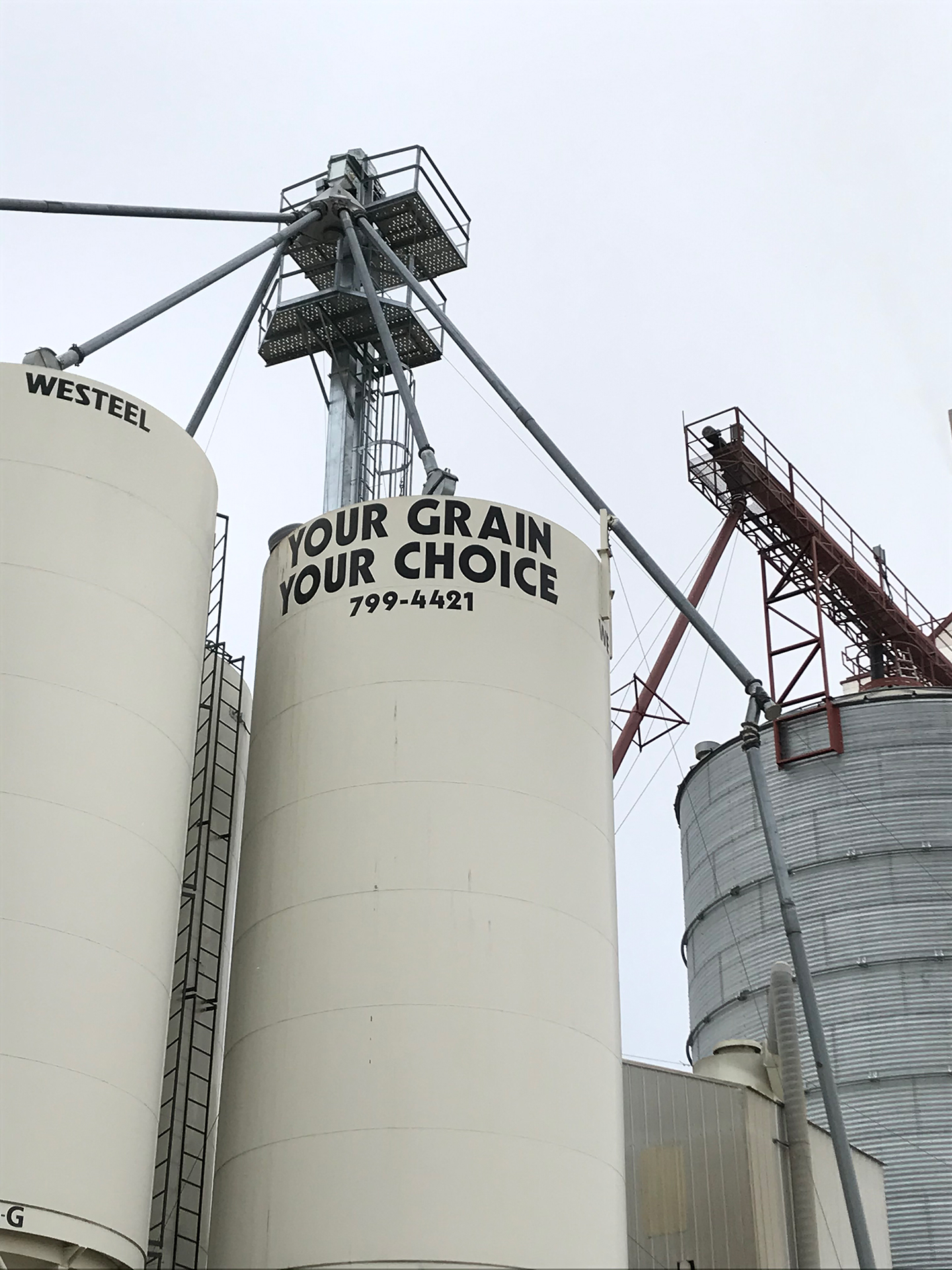 Close-up grain cleaning and storage facility